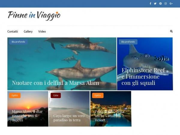 pinneinviaggio.com